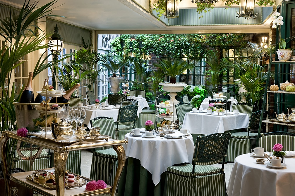 Conservatory at the Chesterfield Hotel
