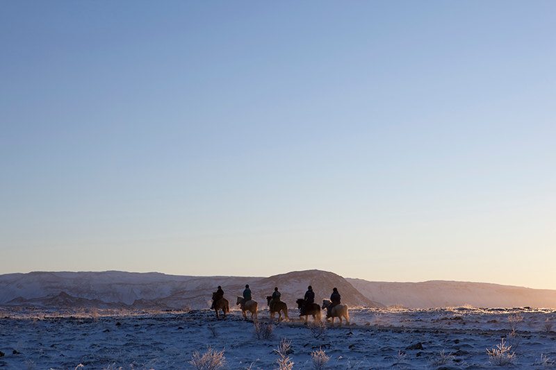 Horseback Riding in Iceland at Winter