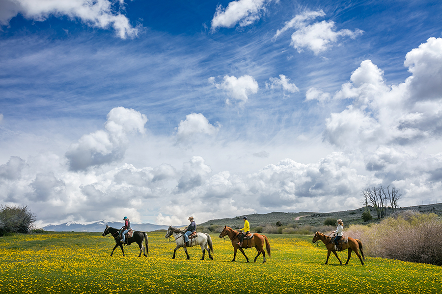 Magee Lodge activities such as Horseback riding on the Meadow