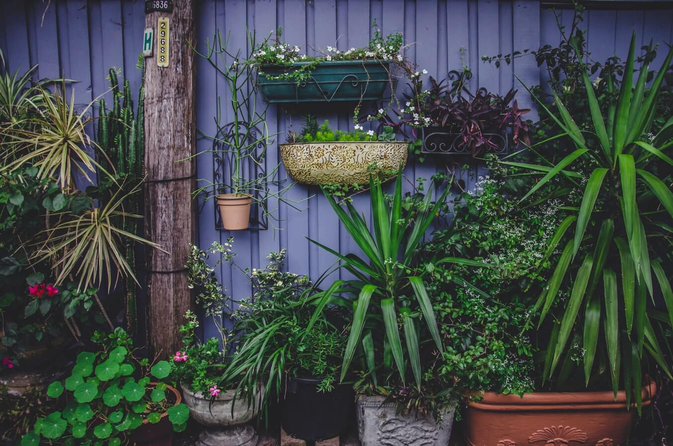 small garden adds to the aesthetic of your house