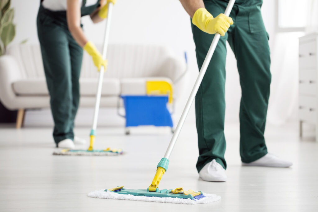 pest control cleaning