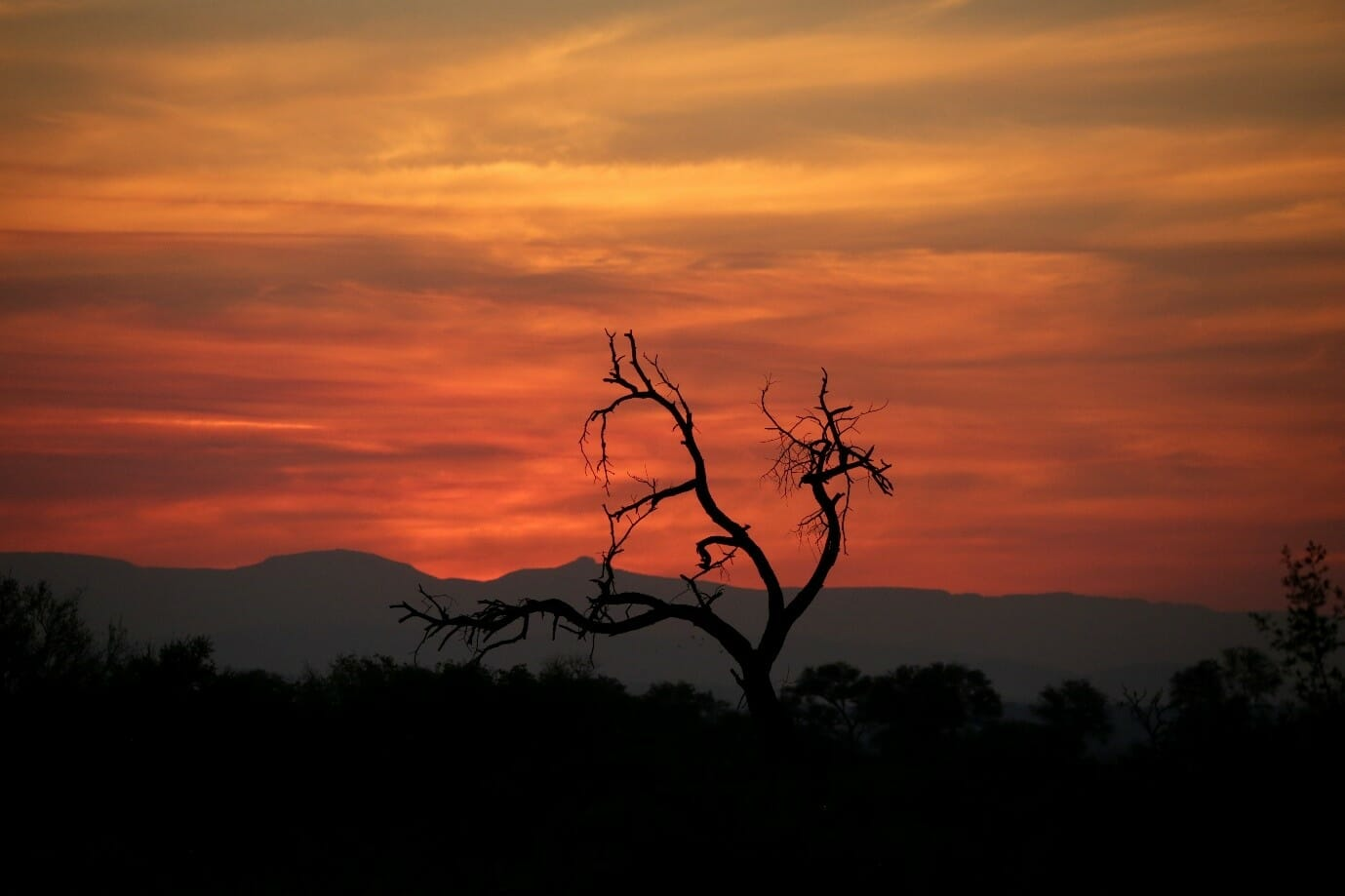 Sunsets in the Kruger National Park are simply incredible. Photo by Heléne Ramackers